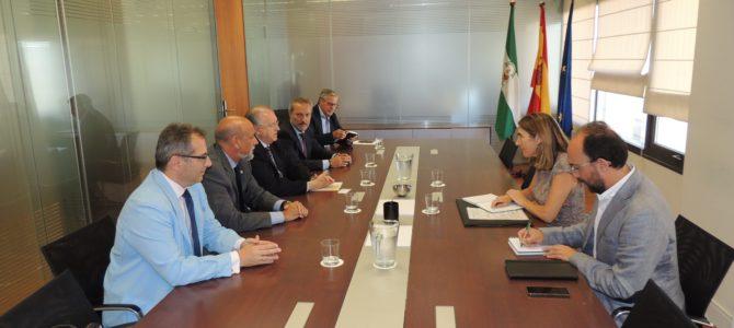 El Consejo de Graduados Sociales se reúne con la consejera de Empleo de la Junta de Andalucía